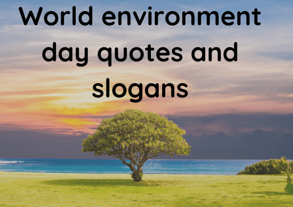 World environment day quotes and slogans