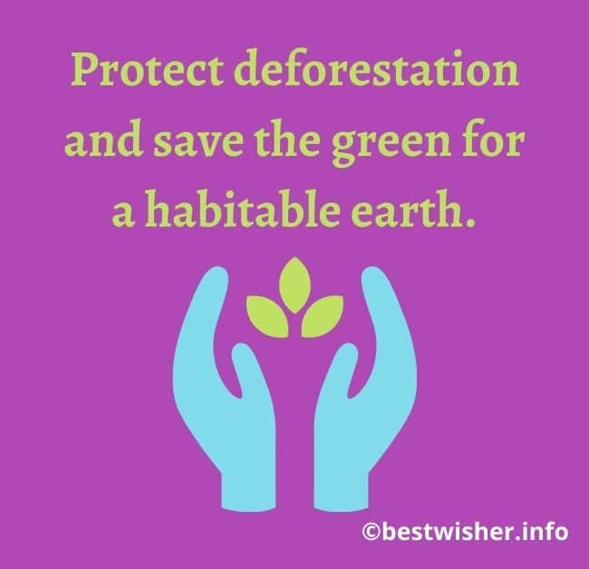 simple quotes on world environment day