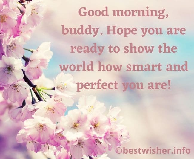Morning wishes for friends
